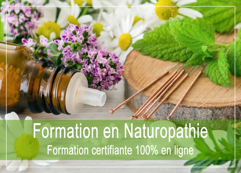Formation Naturopathe